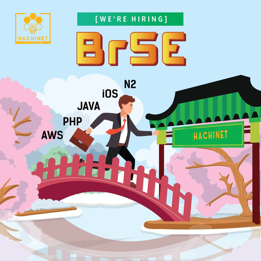 What is the Japanese Bridge System Engineer?