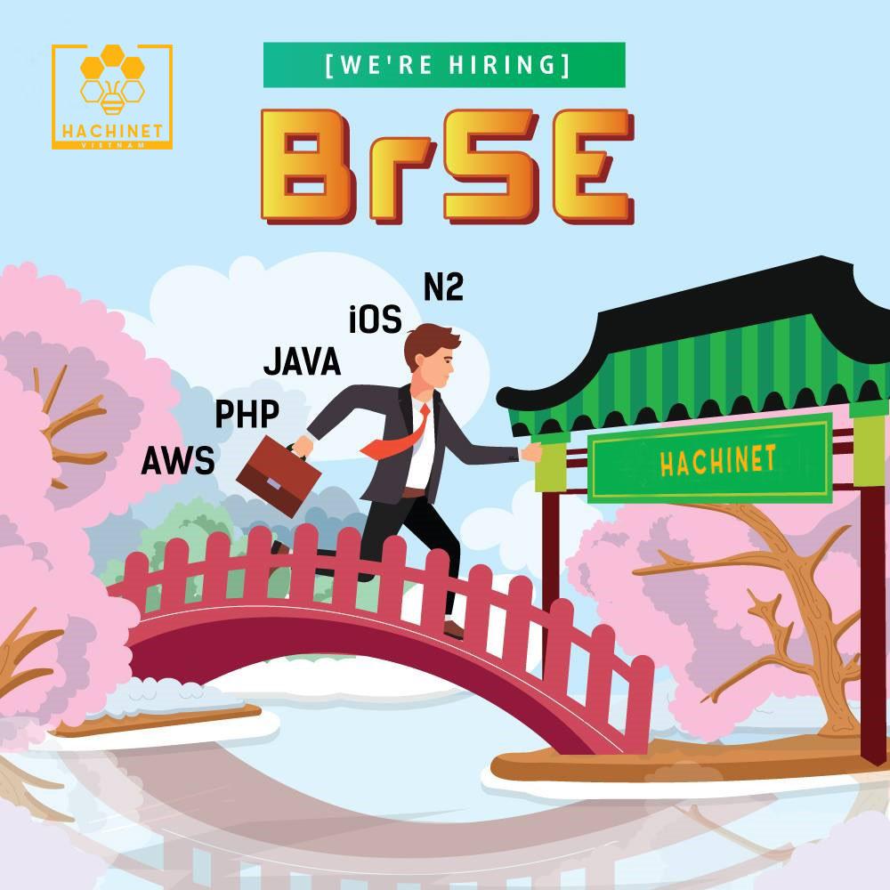 BrSE(ブリッジSE)とは?