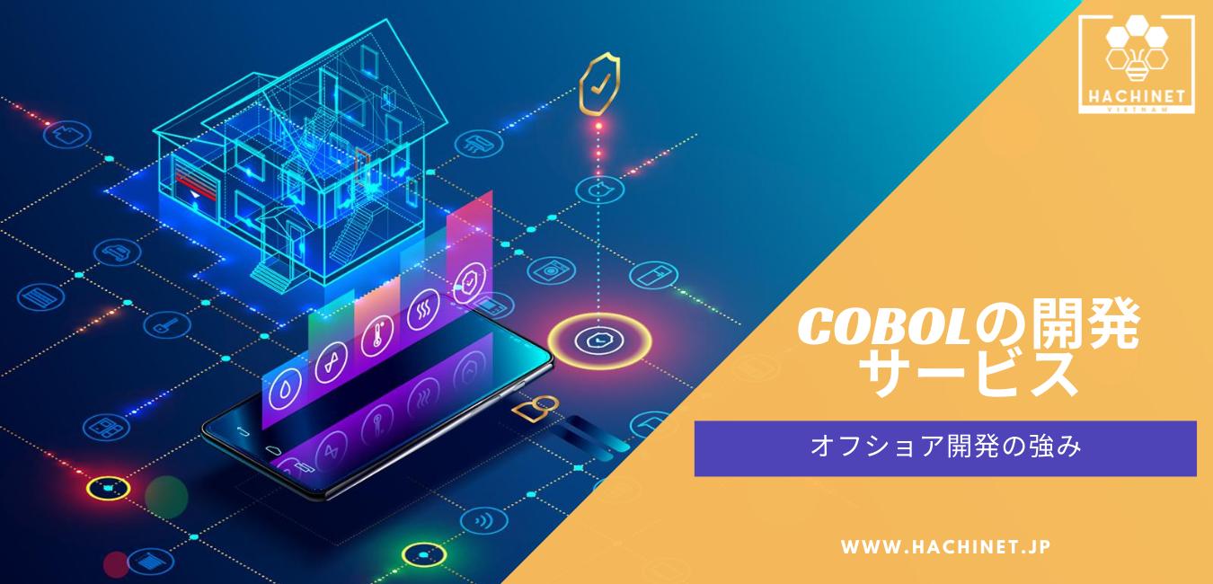 COBOL Development Services | Strengths of Offshore Development | HACHINET SOFTWARE