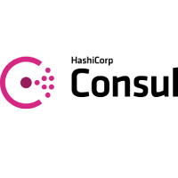 Consul DEVELOPMENT TOOLS